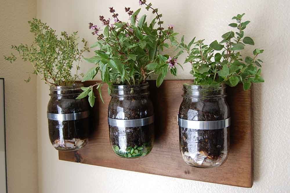growing herbs in your kitchen bray amp scarff kitchen